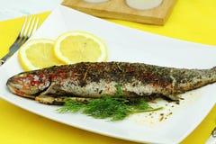 鱼鳟鱼 库存图片