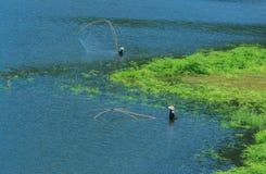 鱼,渔,渔夫 免版税图库摄影