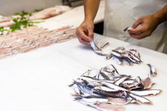 鱼贩子鱼为卖做准备在鱼市上 图库摄影