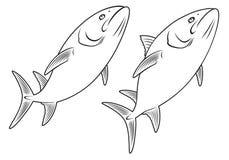 鱼 向量例证