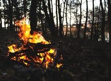鲁宾逊的火 库存照片