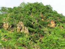 鲁德拉普拉耶格的,印度喜马拉雅山 图库摄影