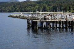 鲍威尔有森林的河小游艇船坞在背景中 免版税库存照片