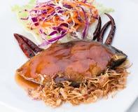 鲑鱼排 免版税图库摄影
