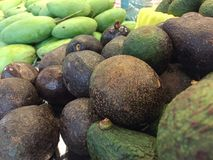 鲕梨和芒果在水果市场上 库存照片