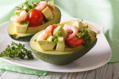 鲕梨和虾沙拉特写镜头鲜美开胃菜  水平 库存照片
