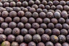 鲕梨在一个市场上在墨西哥 免版税库存图片