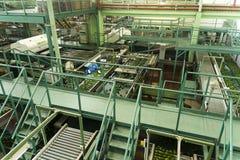 鲕梨屠宰加工厂 免版税库存照片