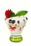 鲜果甜冻酸奶 库存照片