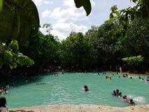 鲜绿色池 库存图片
