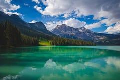 鲜绿色湖反射 免版税库存照片