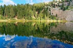 鲜绿色湖,加利福尼亚 免版税图库摄影