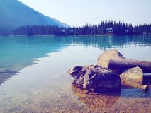 鲜绿色湖,加拿大的静止 免版税图库摄影
