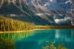 鲜绿色湖 免版税图库摄影