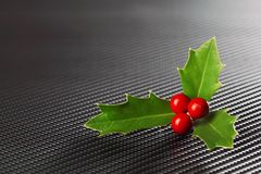 鲜绿色的圣诞节霍莉用红色莓果 库存照片