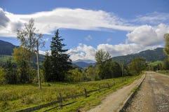 鲜绿色的山在夏天 免版税库存照片