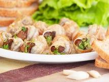 鲜美准备的escargot 免版税库存照片