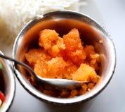 鲜美印地安食物 库存照片