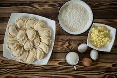 鲜美和健康饺子用酸奶干酪 库存照片