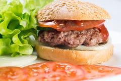 鲜美和开胃汉堡包乳酪汉堡 免版税库存照片