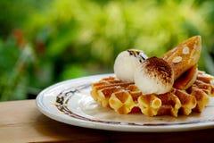 鲜美奶蛋烘饼和香草冰淇淋集合服务与香蕉糖涂层冠上用在白色板材的巧克力汁在绿色庭院里 图库摄影