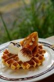 鲜美奶蛋烘饼和香草冰淇淋集合服务与香蕉糖涂层冠上用在白色板材的巧克力汁在绿色庭院里 免版税图库摄影