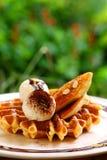 鲜美奶蛋烘饼和香草冰淇淋集合服务与香蕉糖涂层冠上用在白色板材的巧克力汁在绿色庭院里 库存图片
