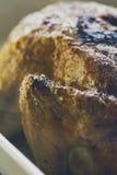 鲜美开胃烤鸡特写镜头与外壳宏指令的 S 库存图片