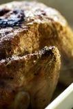 鲜美开胃烤鸡特写镜头与外壳宏指令的 S 图库摄影
