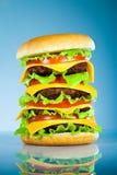 鲜美开胃蓝色的汉堡包 免版税图库摄影