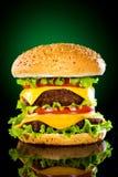 鲜美开胃黑暗地绿色的汉堡包 库存图片