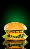 鲜美开胃黑暗地绿色的汉堡包 免版税库存图片