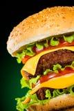 鲜美开胃黑暗地绿色的汉堡包 免版税库存照片