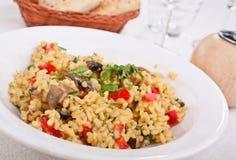 鲜美意大利蘑菇的意大利煨饭 库存图片