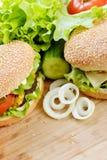 鲜美汉堡包 库存照片