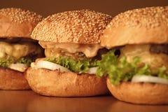 鲜美汉堡开胃新鲜的汉堡 库存图片