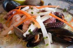 鲜美沙拉的海鲜 库存图片