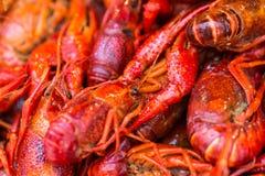 鲜美油煎的螃蟹 免版税库存图片