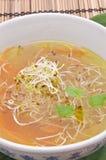 鲜美清淡的大酱汤非常 免版税图库摄影