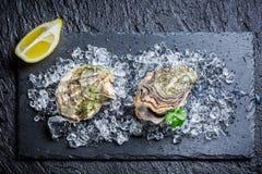 鲜美牡蛎 免版税图库摄影
