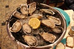 鲜美牡蛎 免版税库存照片