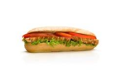 鲜美的三明治 免版税库存照片