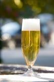 鲜美的啤酒 库存照片