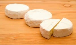 鲜美的干酪 免版税库存照片