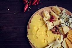鲜美的开胃菜 干酪牌照 免版税库存图片
