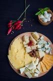 鲜美的开胃菜 干酪牌照 库存图片