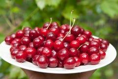 鲜美的樱桃 库存图片