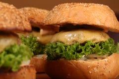鲜美的汉堡 库存照片