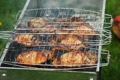 鲜美的肉 免版税库存照片