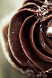 鲜美美丽的开胃巧克力自创杯形蛋糕o宏指令  库存照片
